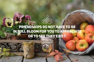 friendships do not have to be in full bloom for you to appreciate or know they exist