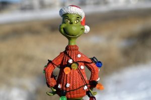 I married a Grinch