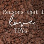 The Top 5 Reasons Why I Love TDYs