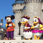 Disney World: A Local Girl's Guide to the Magic