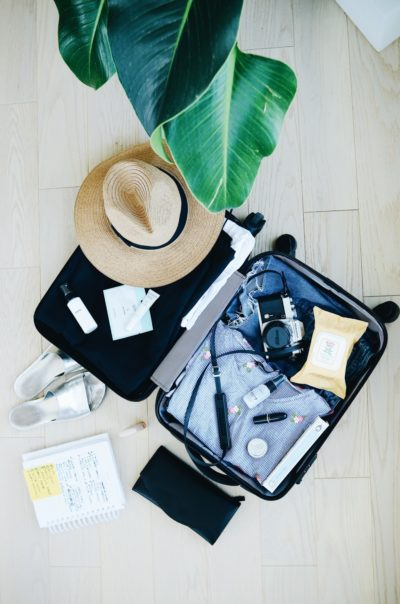 luggage with safari hat and palm leaves