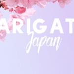 Arigato! 12 Reasons I'll Miss Living in Japan