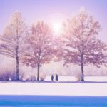 10 Ways to Spark Joy this Winter