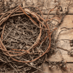 What's Next After The Empty Nest?