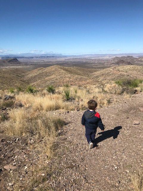 toddler exploring outdoors