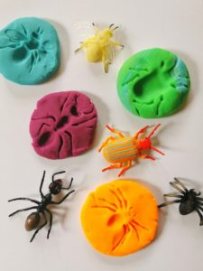 Insect Playdough Fossils