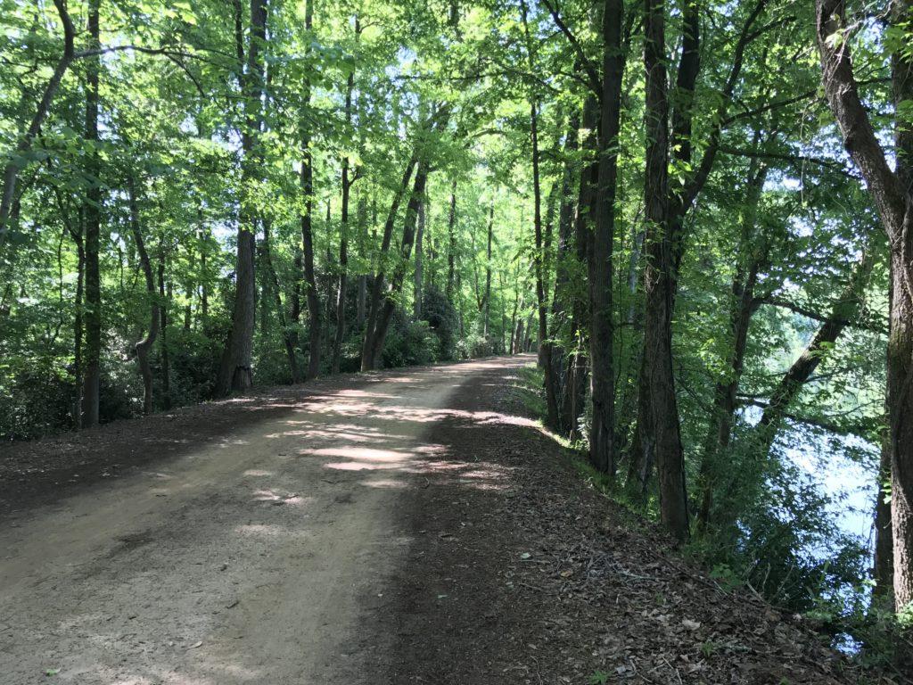 trails in Savannah