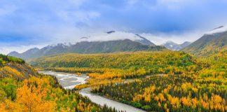wild outdoors of alaska