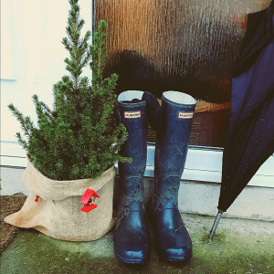 Rain boots with a small Christmas Tree