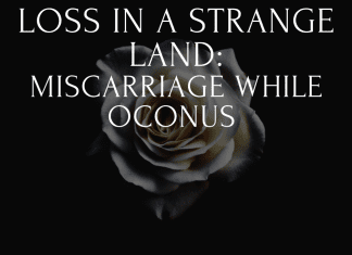 loss in a strange land with white rose on black background