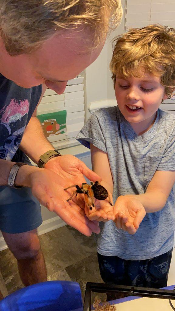 man and kid holding a tarantula