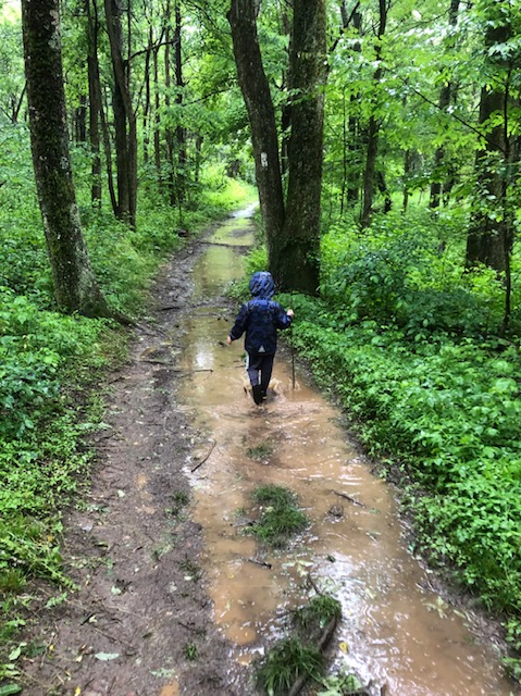 A child in a blue raincoat hikes the Appalachian Trail. It is muddy with green trees on either side.