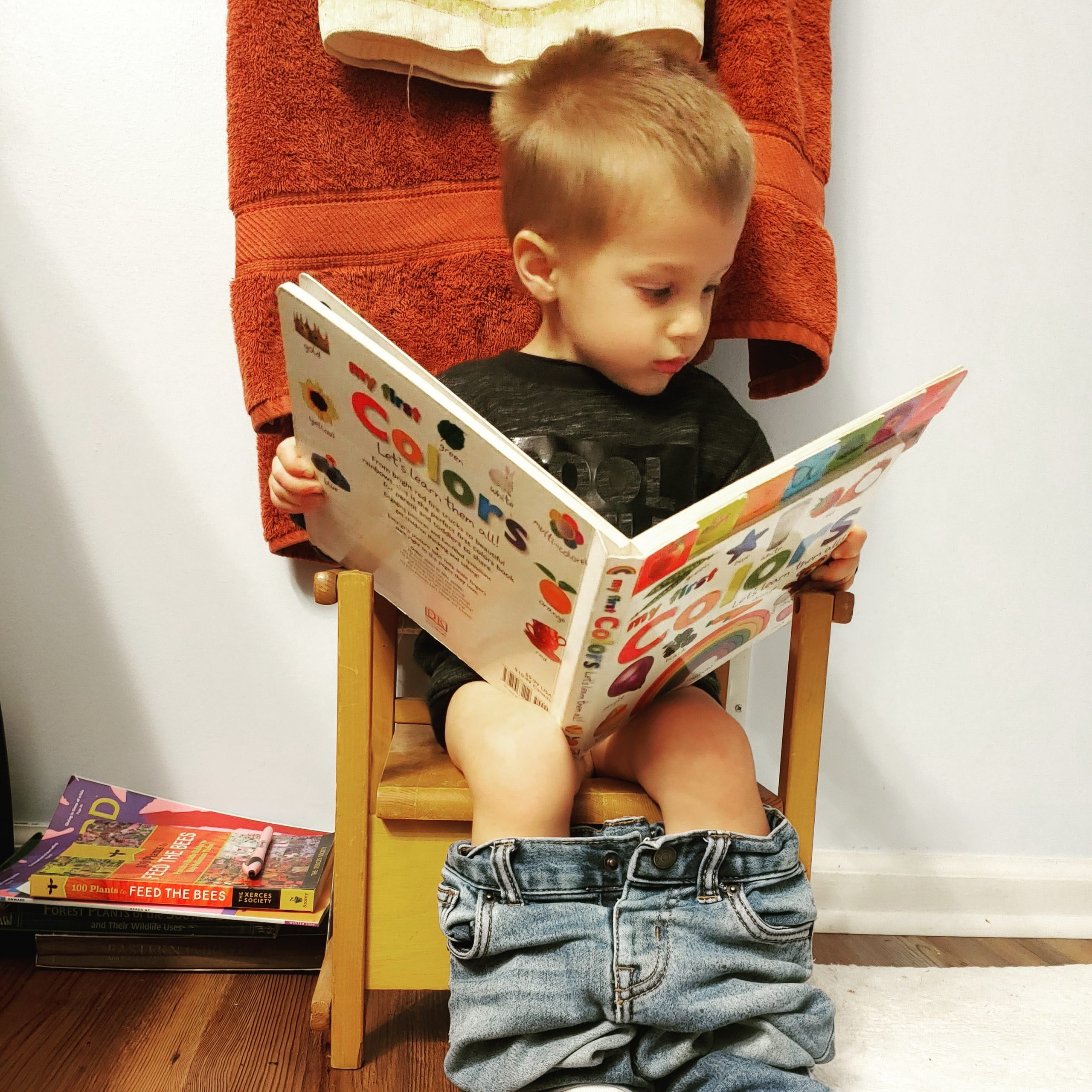 Toddler boy sitting on a potty training chair reading a colorful book