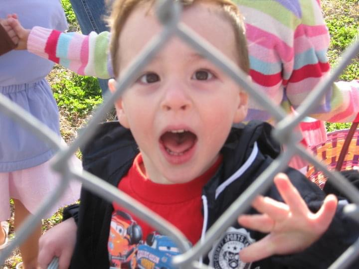 Child screaming through the fence