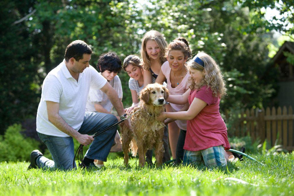 a family surrounding a dog
