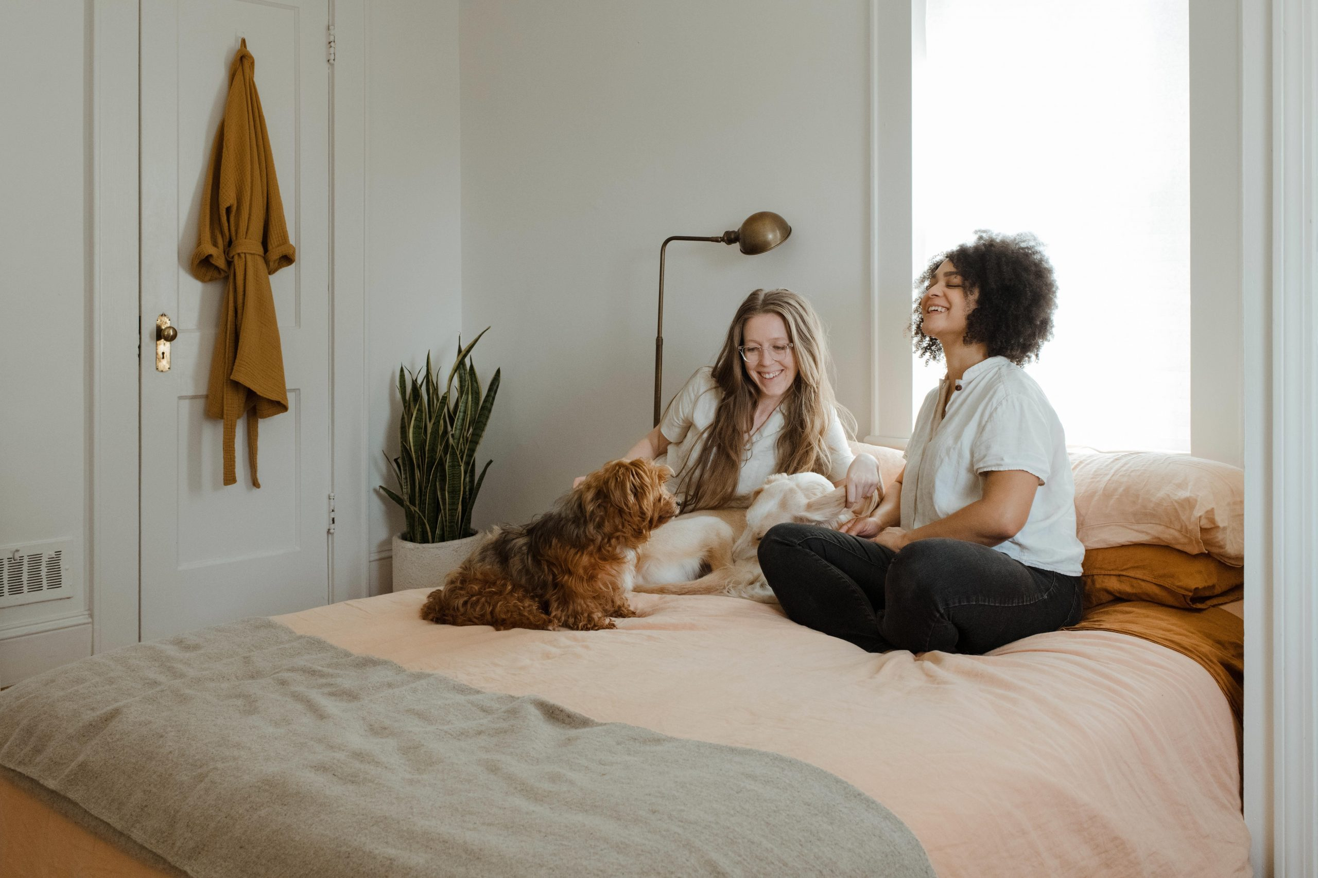 Couple on bed with dog