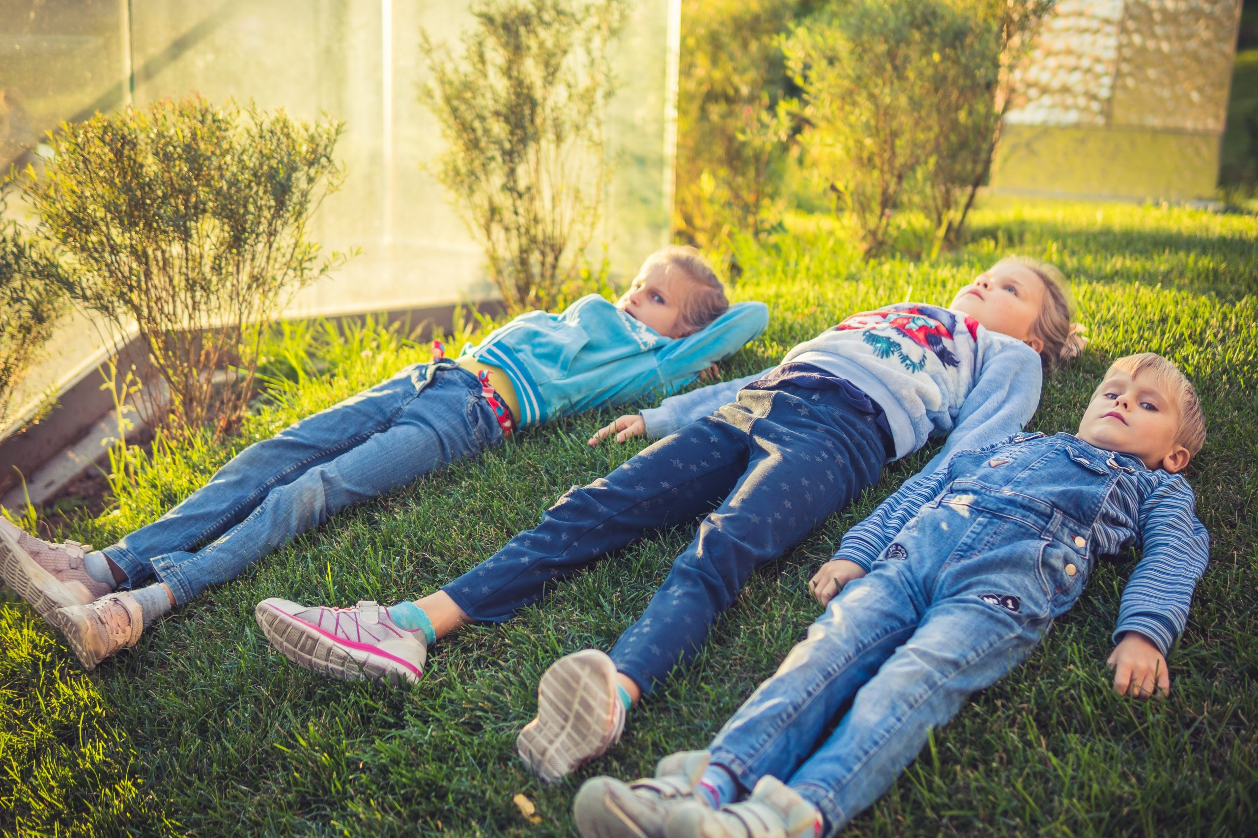 children laying on the grass and resting
