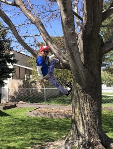 girl in blue shirt and red hat climbing a tree
