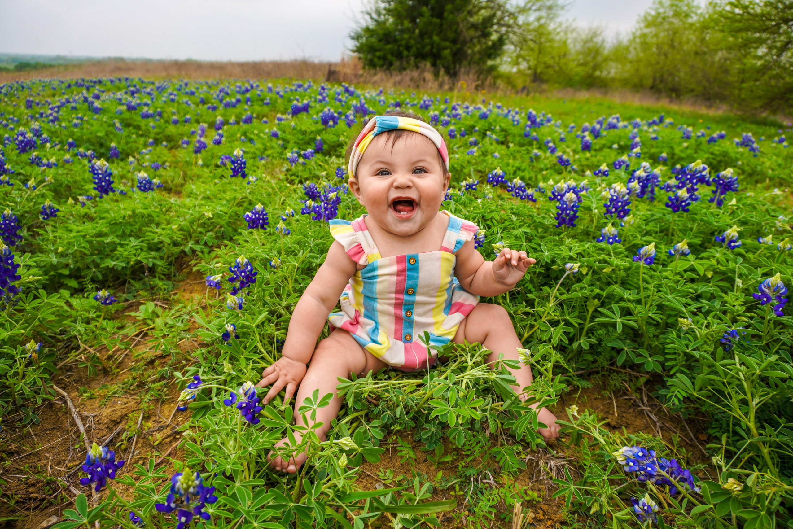 baby girl sitting in a field of blue bonnets in Texas