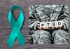 teal ribbon on wood grain background with a soldier holding blocks spelling PTSD