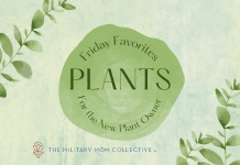 """green climbing plant leaves on a green background with """"Friday Favorites: Plants for the New Plant Owner"""" in text and MMC logo"""