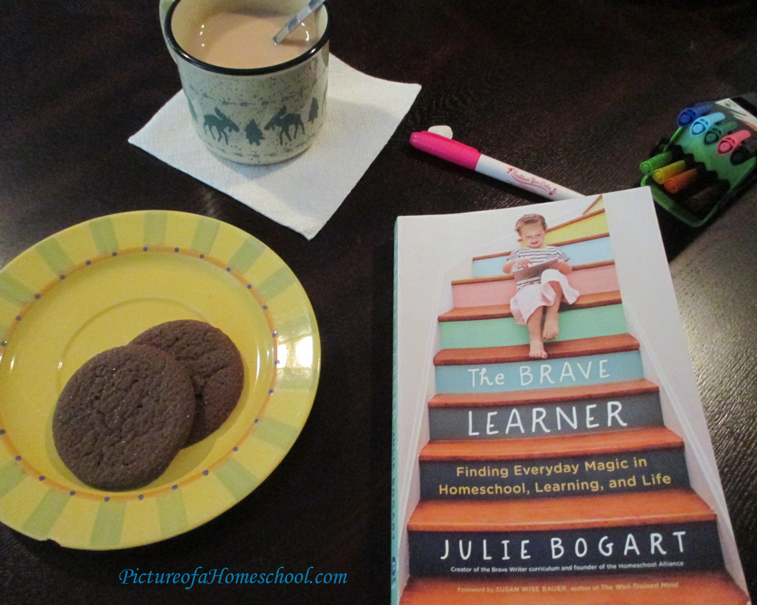Book titled The Brave Learner